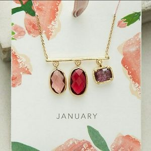 Anthropologie January Birthstone Necklace NWOT